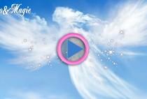 contatto angeli