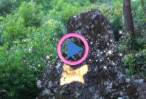 farfalla-dorata-monte-caprione-solstizio-destate