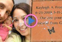 kayleigh freeman