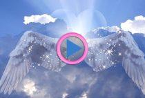 manifestazione angeli