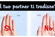 partner traditore