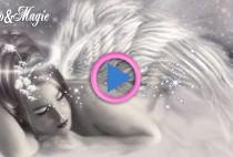 sogni angeli